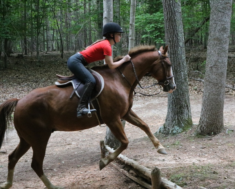 Camper jumps her horse on a trail ride at the Camp Friendship overnight Equestrian Camp