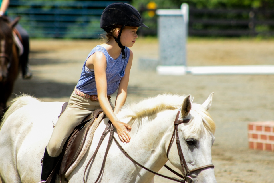 Young Equestrian camper rides her horse in a lesson at the overnight Equestrian Camp at Camp Friendship