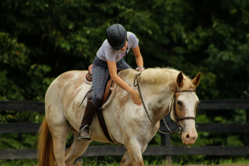 Camper gives her horse a pat during a lesson at the horse summer camp in Virginia