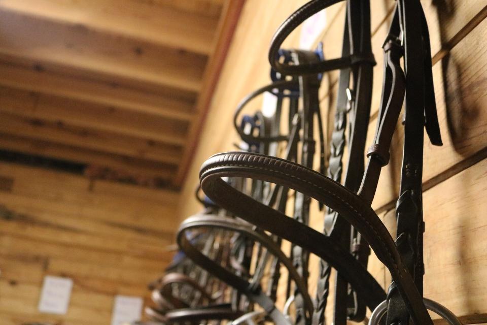 Bridals hang along the tack room wall at the Camp Friendship Equestrian Center