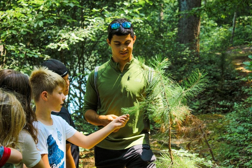 Male counselor shows group of campers how to identify trees in nature of Camp Friendship