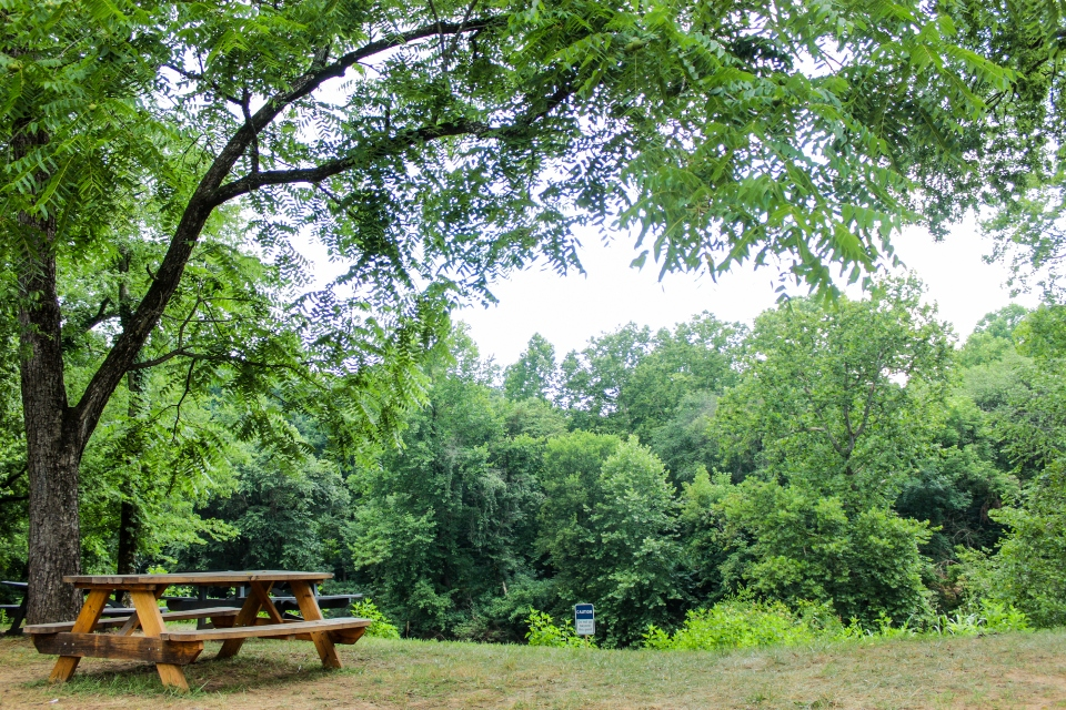 Picnic table overlooking green trees by Rivanna River at Camp Friendship