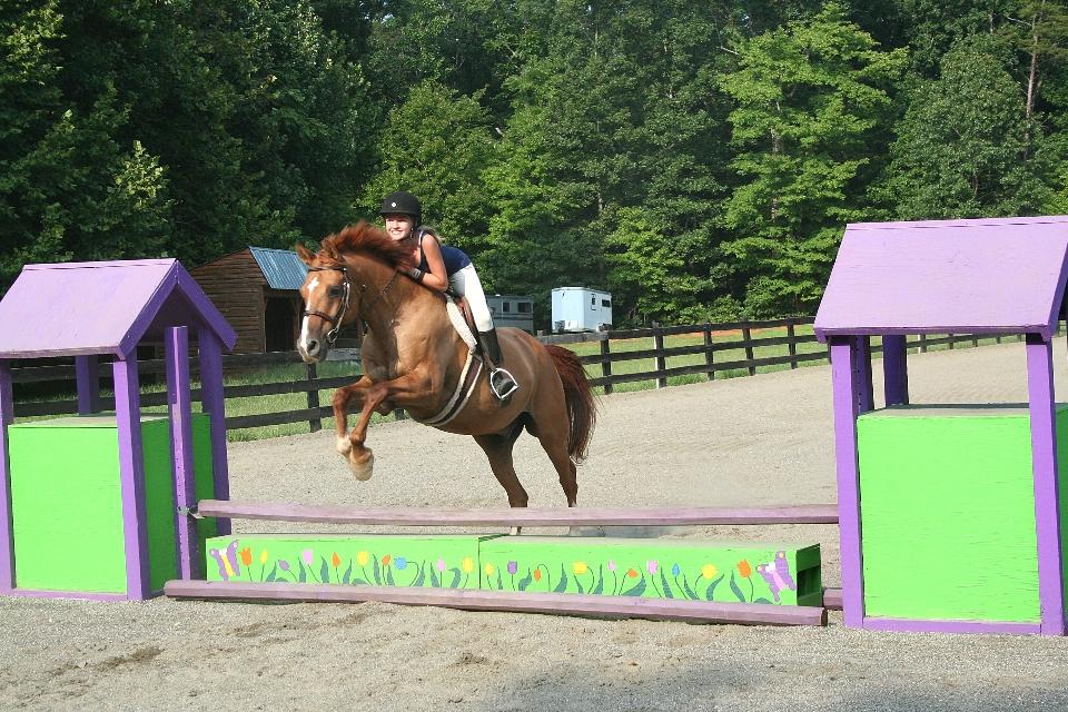 Equestrian camper jumps her horse at overnight Equestrian summer program