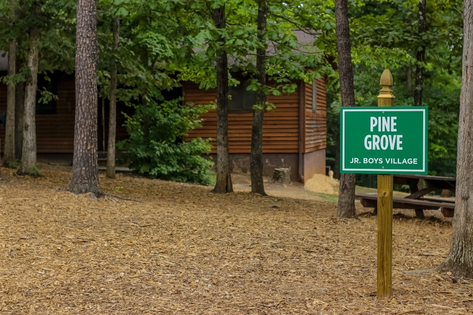 "Green sign reading ""Pine Grove Junior Boys Village"" overlooking the grove of pine trees in the pine grove village"